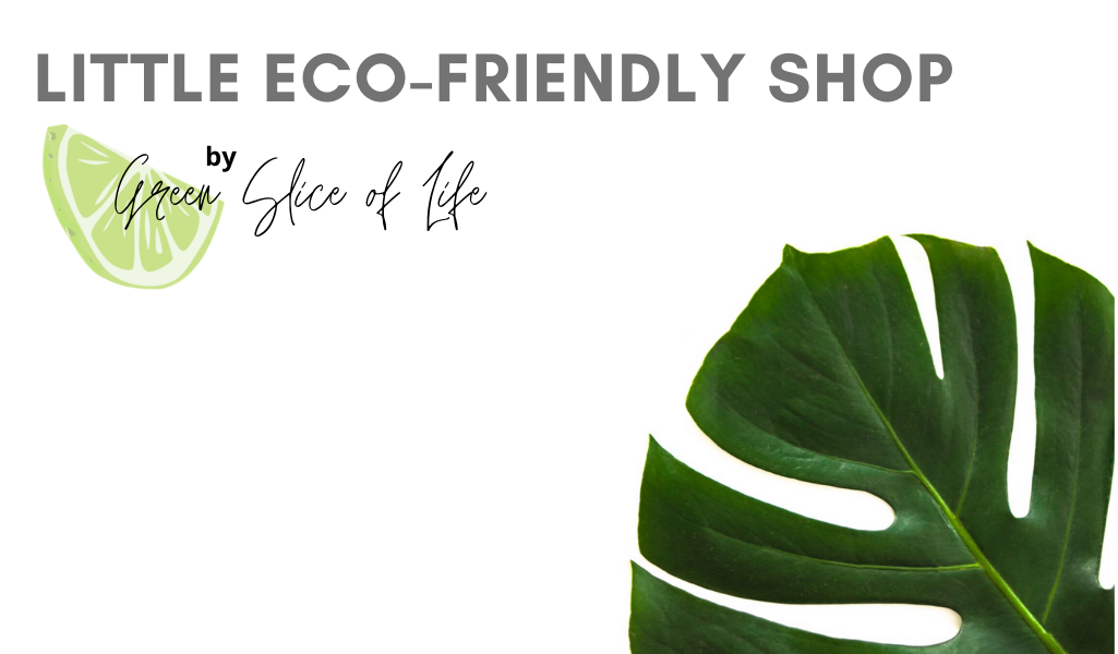 Little Eco-Friendly Shop by Green Slice of LIfe