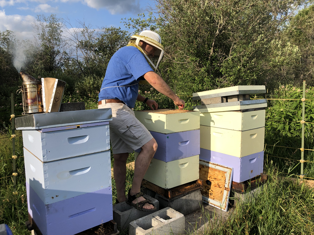 Image for What's an Apiarist? Here's a beekeeper and his hives.